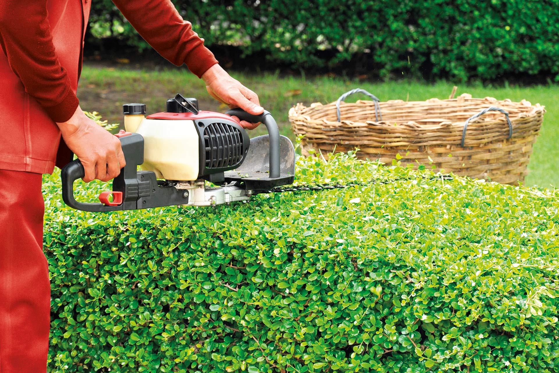 Grüne Dienste – Grünanlagenpflege